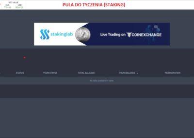stakinglab hosting(13)