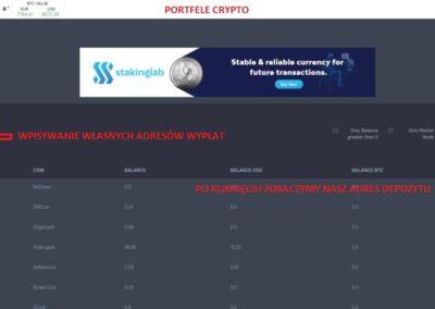 stakinglab hosting(8)