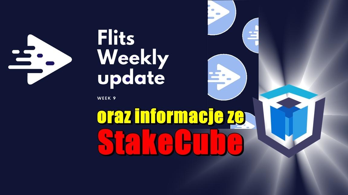 Cotygodniowa aktualizacja Flits – tydzień 9 oraz informacje ze StakeCube