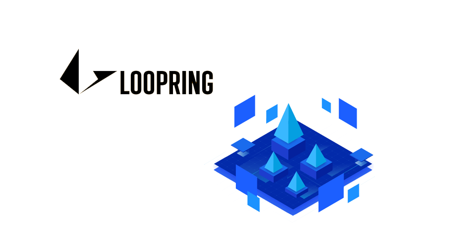 loopring-protocol-cryptoninjas (1)