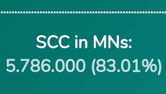 Fakt SCC ponad 80% monet jest obecnie zablokowanych w masternodes