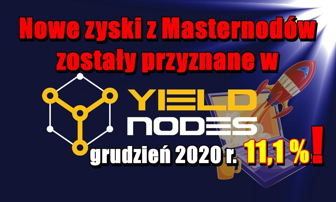 Nowe zyski z Masternodów zostały przyznane w Yieldnodes – grudzień 2020 r.