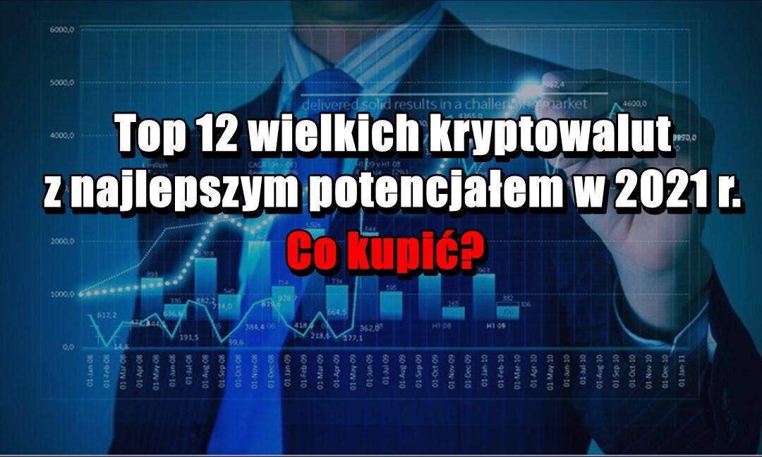 Top 12 wielkich kryptowalut z najlepszym potencjałem w 2021 r. Co kupić?